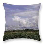 Pennsylvania Cornfield Throw Pillow