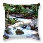 Pennsylvania Creek Throw Pillow