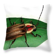 Pennsylvania Firefly Throw Pillow