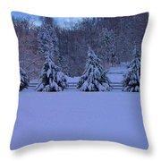 Pennsylvania Snowy Wonderland Throw Pillow