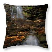 Pennsylvania Waterfalls Throw Pillow