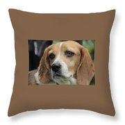 The Beagle Named Penny Throw Pillow