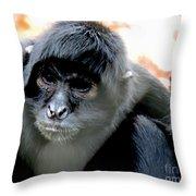 Pensive Monkey Throw Pillow