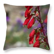 Penstemon Throw Pillow by Kathy McClure