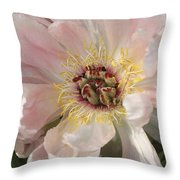 Peonie In Soft Pink Throw Pillow