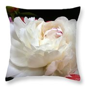 Peony Addiction Throw Pillow