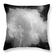 Peony Flower Phases Black And White Contrast Throw Pillow
