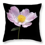 Peony Flower Portrait Throw Pillow