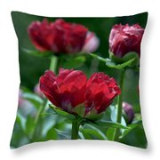 Peony Garden 7661a Throw Pillow
