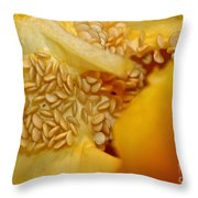 Pepper Reproduction Throw Pillow