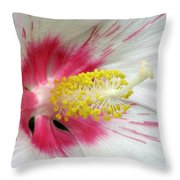 Peppermint Flame 01 Throw Pillow