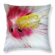 Peppermint Flame 02 Throw Pillow
