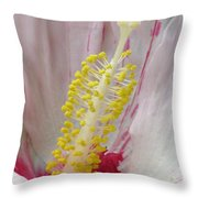 Peppermint Flame 03 Throw Pillow