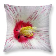 Peppermint Flame 04 Throw Pillow
