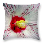Peppermint Flame 04a Throw Pillow