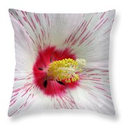 Peppermint Flame 05 Throw Pillow