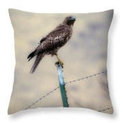 Perched Above Throw Pillow