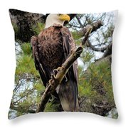 Perched After The Hunt Throw Pillow