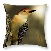 Perched And Ready Throw Pillow