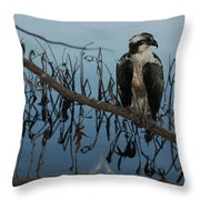 Perched Throw Pillow by April Wietrecki Green