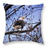 Perched Bald Eagle Throw Pillow