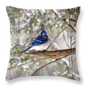 Winter Blue Throw Pillow