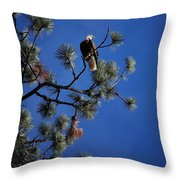 Perched II Throw Pillow