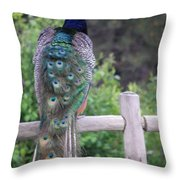 Perched Peacock Throw Pillow