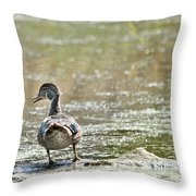 Perched Quacker Throw Pillow