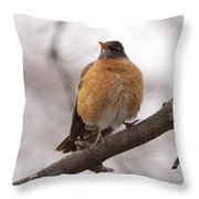 Perched Robin Throw Pillow