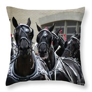 Percheron Horse Team 2008 Throw Pillow
