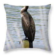 Perching Cormorant Throw Pillow