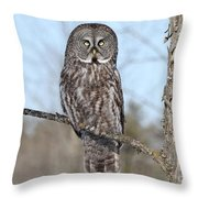 Perching Perfect Throw Pillow