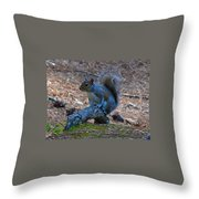 Perching Squirrel Throw Pillow