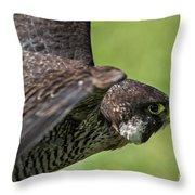 Peregrine Falcon 4 Throw Pillow