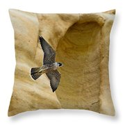 Peregrine Falcon Flying By Cliff Throw Pillow