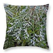 Perennial With Frost Throw Pillow