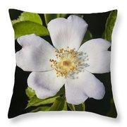 Perfect Dog Rose Throw Pillow