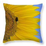 Perfect Half With Blue Sky Throw Pillow
