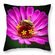 Perfect Happiness Throw Pillow