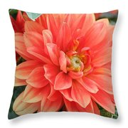 Perfect Petals Throw Pillow