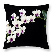 Perfect Phalaenopsis Orchid Poster Throw Pillow