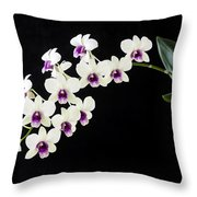 Perfect Phalaenopsis Orchid Throw Pillow