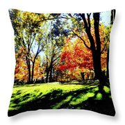 Perfect Picnic Spot Throw Pillow