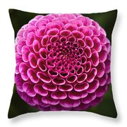 Perfect Pink Orb Throw Pillow