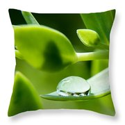Perfect Raindrop Throw Pillow