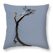 Perfect Reflection Throw Pillow