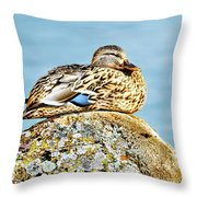 Perfect Resting Rock Throw Pillow