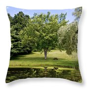 Perfect Spot For A Picnic Throw Pillow