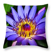 Perfect Water Lily Throw Pillow